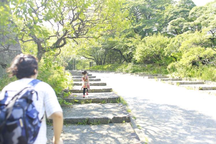 Akira_Fukuoka_Castle