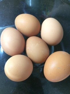 brown_eggs