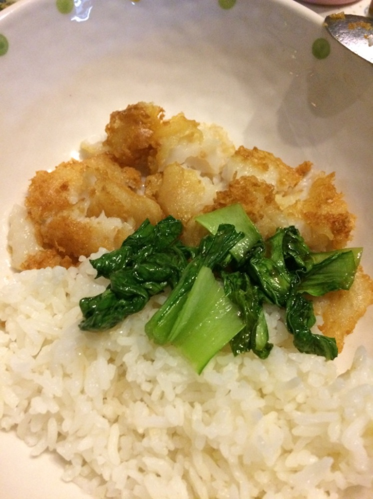 akira_first_food_pic