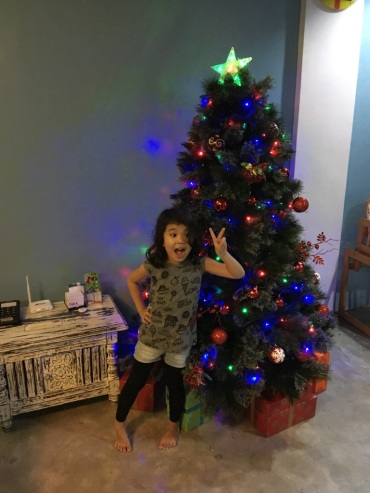 Christmas_tree_is_up