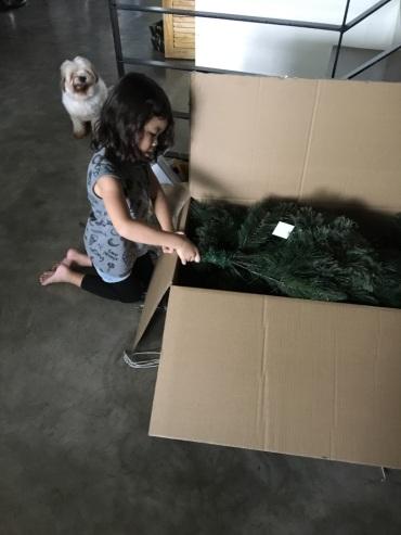 unpacking_Christmas_tree